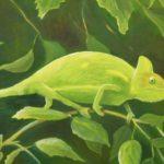 Chameleon von Gisela